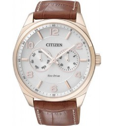 Reloj Citizen Eco-Drive-AO9024-16A